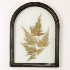 Arched Botanical Wall Art