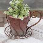 Latte Cup Flower Pot - Ready to Ship